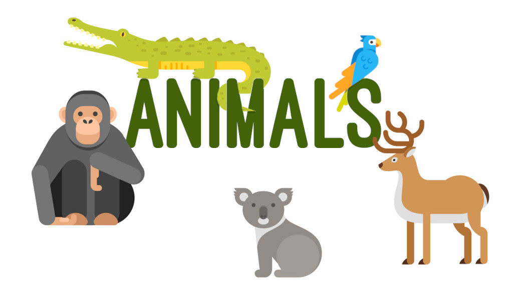 Animals ESL Vocabulary Worksheets and Teaching Activities