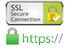 Secure 256-bit encrypted HTTPS connection